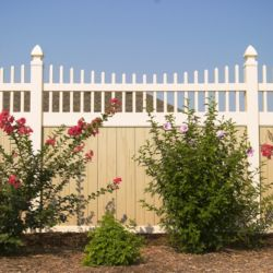 Privacy Fence with Details